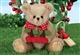 Bearington Bears Beary Cherry 10 inch Plush Bear 143300