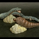 X-Plus Large Monster Series Manda Mothra 1968 Vinyl Figure Set - IMPORT