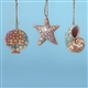 Set of 3 Seashell Ornaments - Jim Shore / Heartwood Creek, 4027758